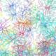 Neuronen Gehirn